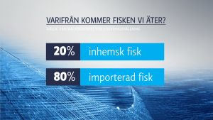 En grafikbild som berättar att 20 % är inhemsk fisk, resten är importerad.