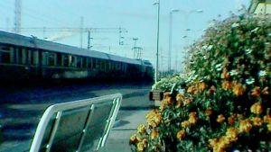 Juna-asema kesällä