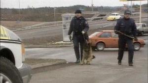 Polisit suorittavat jäljittämistä koiran kanssa 1994.
