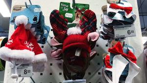 Eläimille tarkoitettuja jouluasusteita.