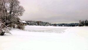 Åkerlandskap täckta av snö.