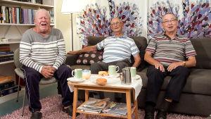 Sohvalla istuu ukkiskerhon jäseniä eli Henkka, Åke ja Veikko