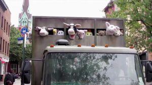 Pehmoeläimiä matkalla teuraaksi eläintenkuljetusautossa, katutaiteilija Banksyn happening New Yorkiss