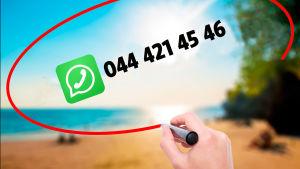 BUUänskemusiks Whatsappnummer i ritad pratbubbla mot solig strandbakgrund i tropikerna.