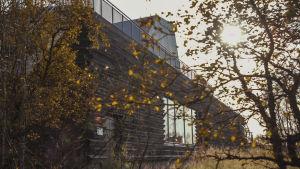 Brunmålat trähus i höstig natur, solljus silas mellan trädgrenar.