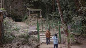 Thaimaalainen pariskunta seisoo luolan suuta kiertävän aidan edustalla