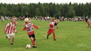 Juniorijalkapalloilijoita