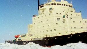 Jäänmurtaja Sisu merellä 1977