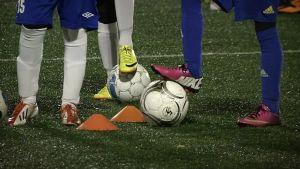 fotbollsjuniorer
