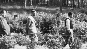 Felix Kersten, Heinrich Himmler ja Jukka Rangell kävelevät ulkona.