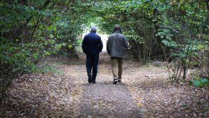 Arto Koskinen ja John Bernstein kävelevät Gut Harzwalden bunkkerialueella