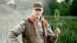 Hamppuaktivist Timo Haara seisoo pellolla