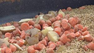 Morot, potatis och frön.