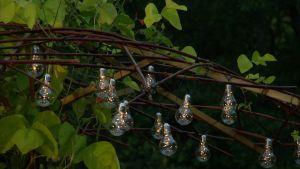 Lampor i skymningen