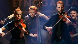 Frigg-yhtye esiintyy Etnogaalassa tammikuussa 2019