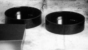 Askkoppar, 1974