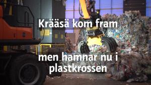 titlecard för video