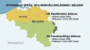 Grafik. Tvåspråkig undervisning erbjuds i 300 skolor i Vallonien och 100 skolor i Flandern.