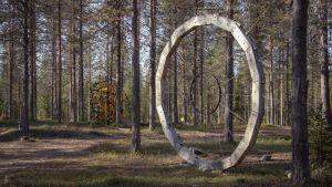 Suurikokoinen taideteos, rengas jossa kulkeutuu keskeltä ulkokehälle lankoja, kiinnitettynä pystyasennossa puihin