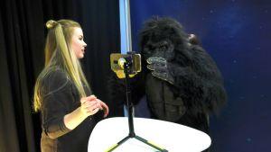 Toimittaja ja gorillahahmo Galaxi-ohjelman kuvauksissa.