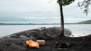utsikt mot havet från bodom träsket i esbo.