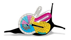 Periodiska systemet i form av en snigel.