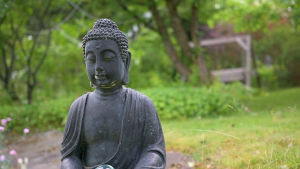 En buddhastaty i en trädgård.