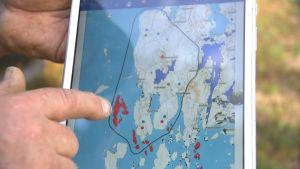 Jägare visar karta över hur utbredd mårdhunden är.