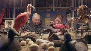 Peter ja Zoë Greenaway ornitologisen kokoelman äärellä
