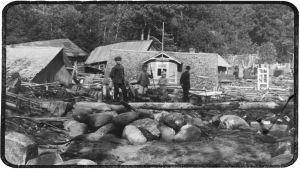 Hirmumyrskyn jälkiä Terijoella syksyllä 1924.