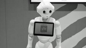 Lähikuvassa Ylermi-robotti (2019).
