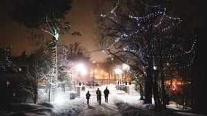 Ihmisiä jouluvalaistussa puistossa.