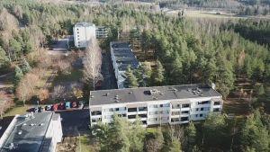 Våningshus i Tallmo fotograferade från luften.