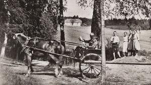 Robert Kajanus saapuu hevosrattailla Martin Wegeliuksen kesäpaikkaan Vikaniin.