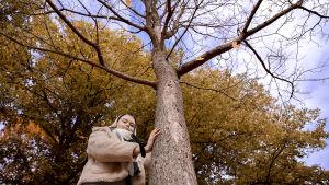 Wilhelmiina Vihreälehto nojaa puun runkoon.