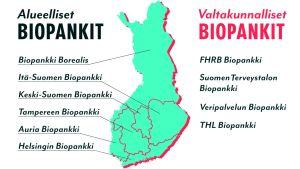 Infografiikka suomessa toimivista alueellisista ja valtakunnallisista biopankeista