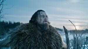 Elokuvan pääroolissa näyttelee Leonardo DiCaprio.