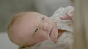 Kätilö tulee kotiin katsomaan kolmen vuorokauden ikäistä vauvaa