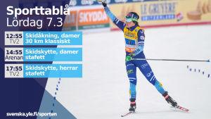 Tv-tablå och Krista Pärmäkoski.