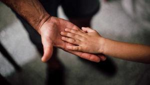 Lapsen kämmen lepää aikuisen kämmenen päällä.