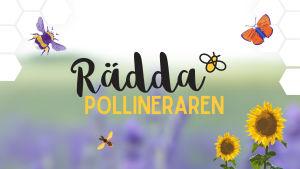 Kampanjbild för kampanjen Rädda pollineraren