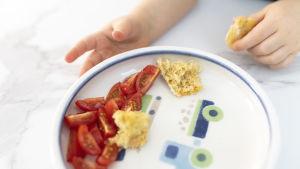 Pienen lapsen käsi ottaa lautaselta minitomaatteja ja leipäpalasia.