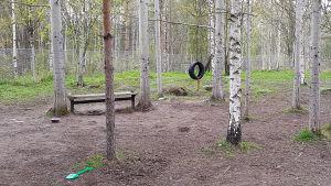 Voisalmen koirapuisto