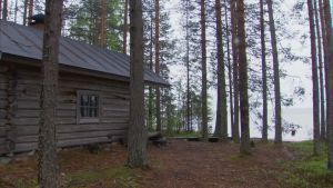Bastu vid stranden av suomunjärvi i Patvinsuo nationalpark.