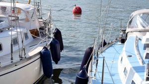 Två segelbåtar i en gästhamn.