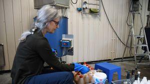 Sirppa Peltonen fyller flaskor med äppelmust.