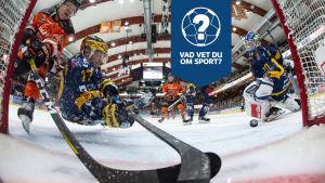 Närkamp framför målet under ishockeyligamatch.