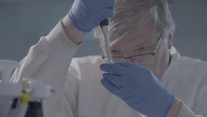 DNA-tutkija ja molekyylibiologi Jari Louhelainen tutkii näytettä laboratoriossa.