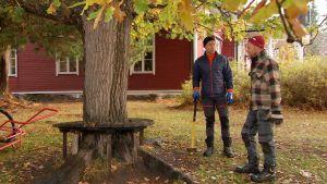 Jim och Nicke i Strömsös trädgård.