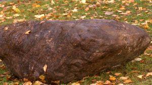 En sten.